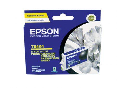 Mực in phun Epson T0491 (đen) – Cho máy R210/ R230/ R310/ R350, RX-510/ 630/ 650